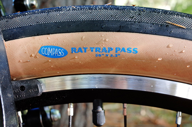 GR001-1670_rat-trap-pass-800